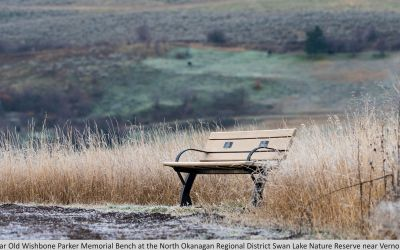 Wishbone Parker Memorial Bench at the Swan Lake Nature Reserve near Vernon BC-2