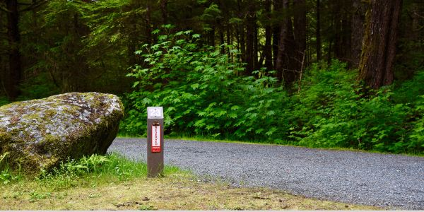 Campsite-Markers-at-Prudhomme-Lake-Provincial-Park-near-Prince-Rupert-BC