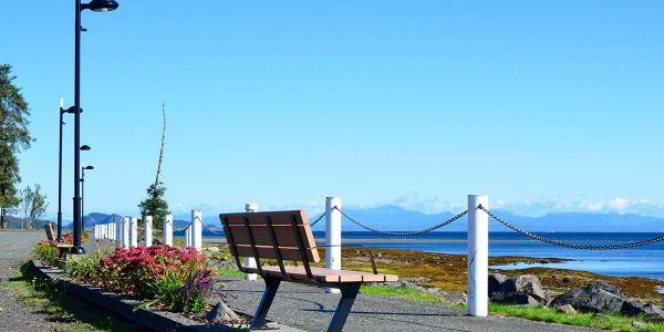 Wishbone-Bayview-Benches-in-Port-Hardy-BC